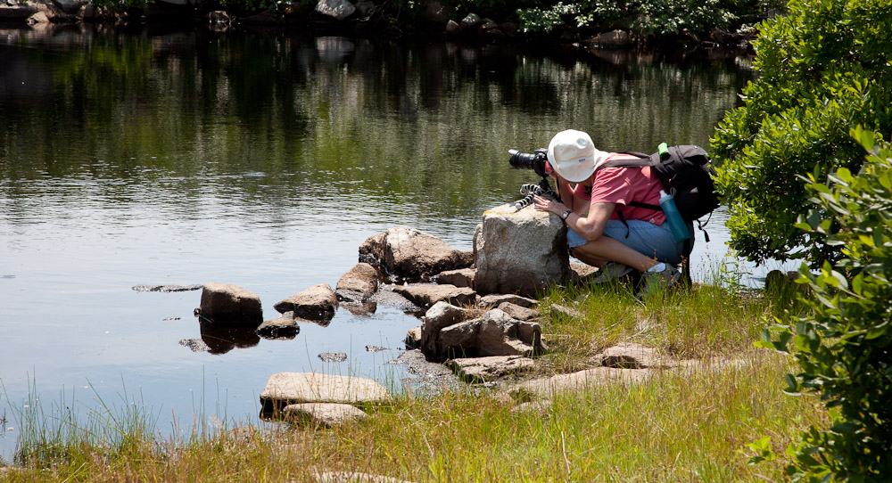 Photography student during photography workshop hosted by photographer Dan Splaine at the Isle of Shoals in New Hampshire.